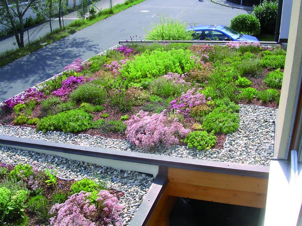 Super Carport und Wohnhaus für die Natur zurückgewinnen - Presse-Blog &YH_09
